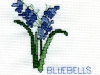 1bluebells-by-maria